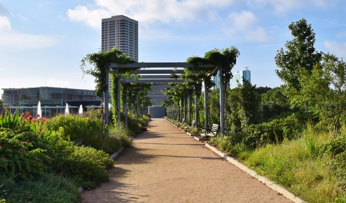 Roses In Garden: Hermann Park Conservancy: Walk With A Doc